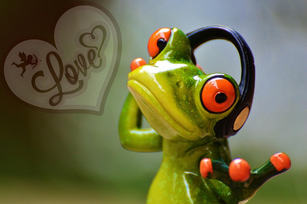 Love Music Frog