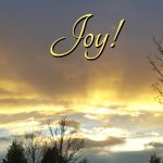The Many Facets of Joy Found, Sometimes in Unexpected Places