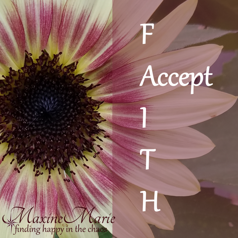 Accept Faith – Finally Accepting God's Timing and Planning (again)
