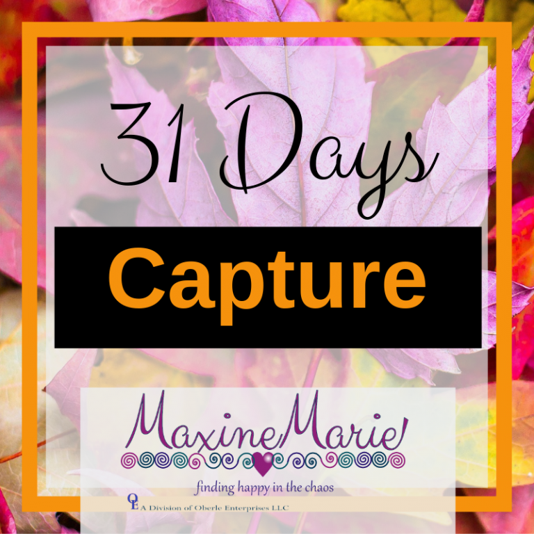 Capture Your Moment…